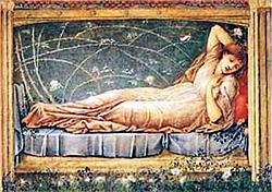 The Sleeping Potion Perfume Oil